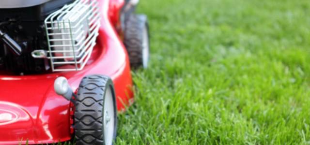Settore giardinaggio ferramenta micco vendita a benevento for Prodotti per giardinaggio
